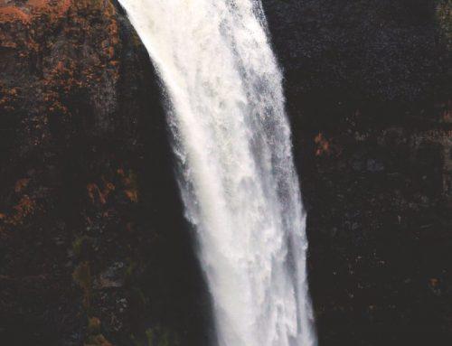 Cloruri